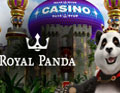 Visit Royal Panda Casino!
